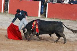 Rivera ordo ez - Valero salamanca ...